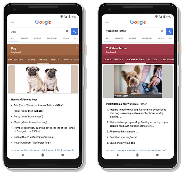 El futuro de Google - Resultados Dinámicos